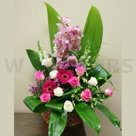 W Flowers product: Arrangement with Cymbidium Orchid