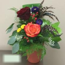 W Flowers product category: Autumn Flowers with feathers