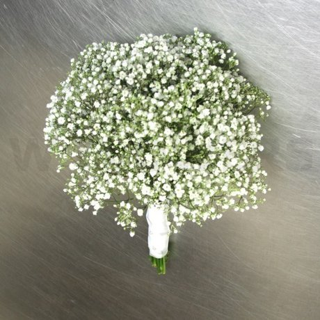 W Flowers product: Baby's Breath Bridesmaid Bouquet