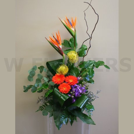 W Flowers product: Birds of Paradise in style