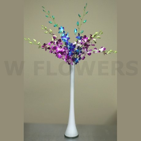 W Flowers product: Blue and Fuchsia Orchids Tall Centerpiece