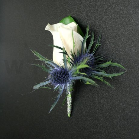 W Flowers product: Boutonniere for Groom with Blue Eryngium