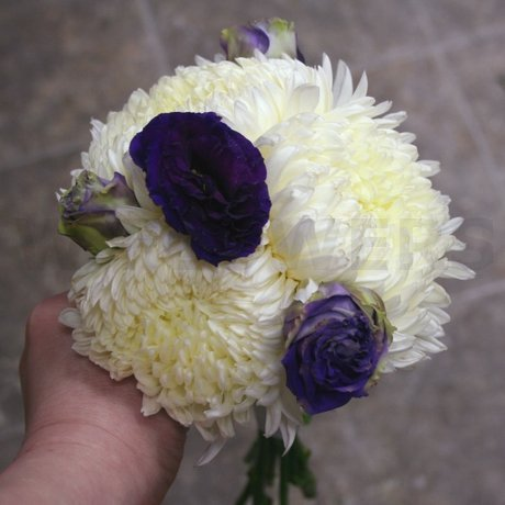 W Flowers product: Bridesmaid Bouquet in white and purple