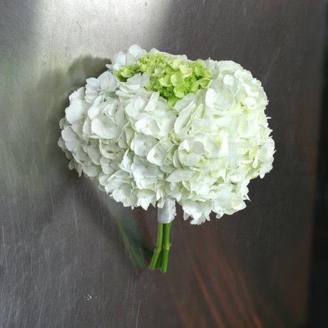 W Flowers product: Bridesmaid Bouquet with White and Green Hydrangea
