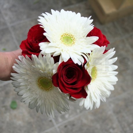 W Flowers product: Bridesmaid Bouquet with White Gerbera and Red Roses
