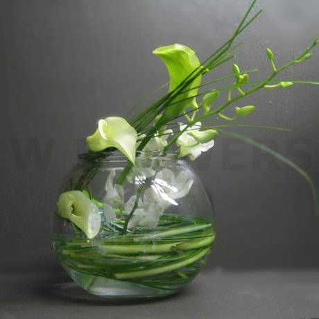 W Flowers product: White Calla Centerpiece