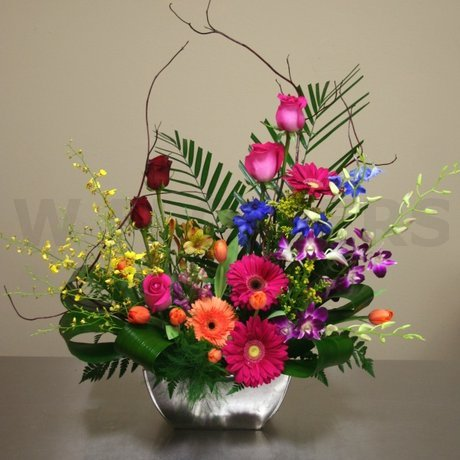 W Flowers product: Color Burst
