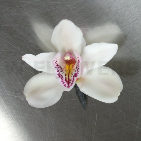 W Flowers product: Cymbidium Orchid Boutonniere