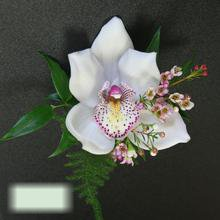 W Flowers product category: Cymbidium Orchid Corsage