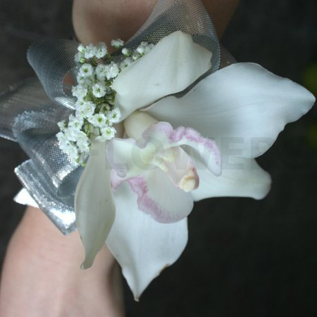 W Flowers product: Cymbidium orchid with silver accent wrist corsage