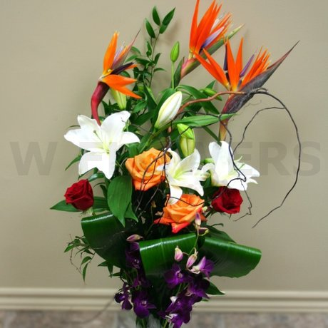 W Flowers product: Elegant Tropical Bouquet
