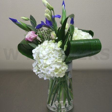 W Flowers product: Elegant White and Blue