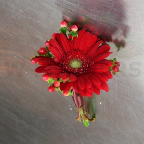 W Flowers product: Flower Girl Bouquet with Red Gerbera