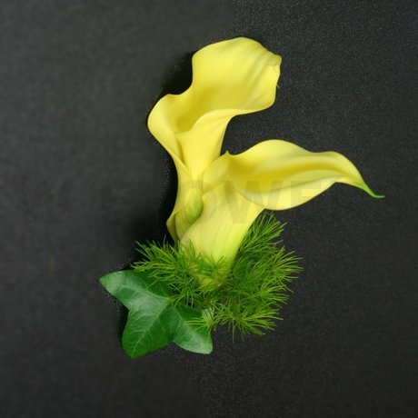 W Flowers product: Groom's Boutonniere with two mini calla