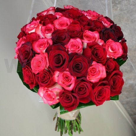 W Flowers product: Half Red Half Pink fifty roses