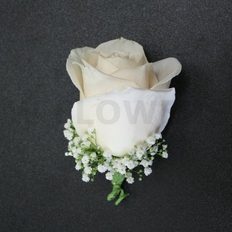 W Flowers product: Ivory Rose Boutonniere