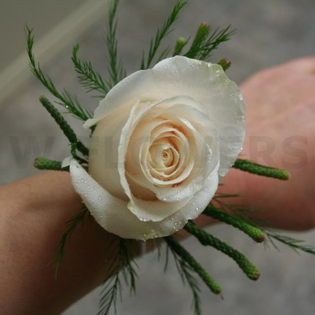 W Flowers product: Ivory Rose Wrist Corsage