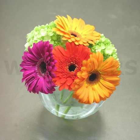 W Flowers product: Lighthearted