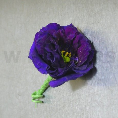 Flower Delivery Ottawa on Modern Purple Boutonniere   W Flowers Ottawa