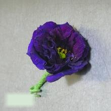 W Flowers product category: Modern Purple Boutonniere