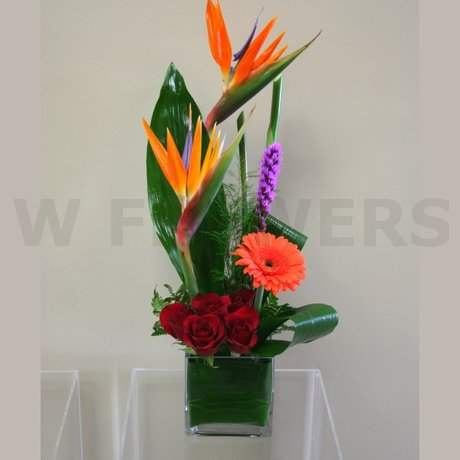 W Flowers product: Modern Tropical Cube