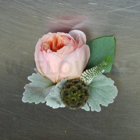 w flowers product peach garden rose boutonniere - Garden Rose Boutonniere