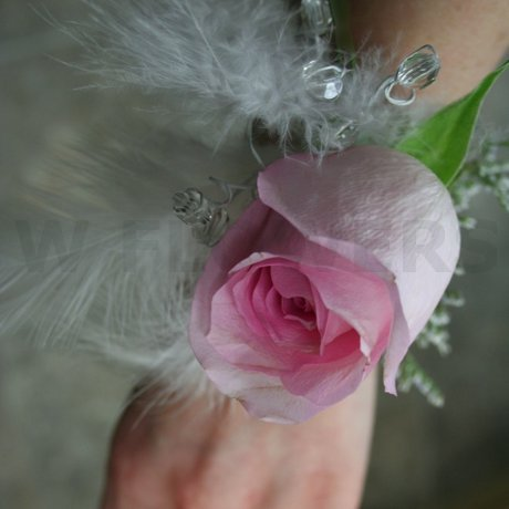 Flower Delivery Ottawa on Prom Corsage With White Feathers   W Flowers Ottawa