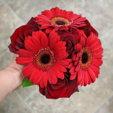 W Flowers product: Red Bridesmaid Bouquet