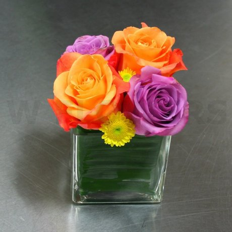 W Flowers product: Roses in a Cube Vase