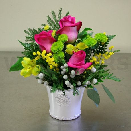 W Flowers product: Roses in a Pot