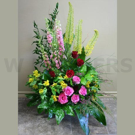 W Flowers product: Serenity