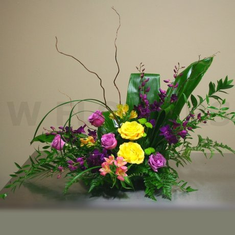 W Flowers product: Spectacular Arrangement