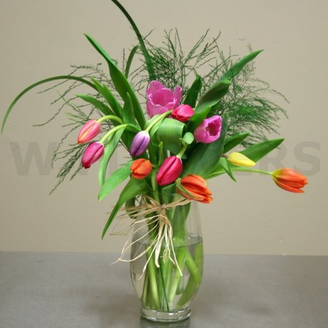 W Flowers product: Spring Tulips
