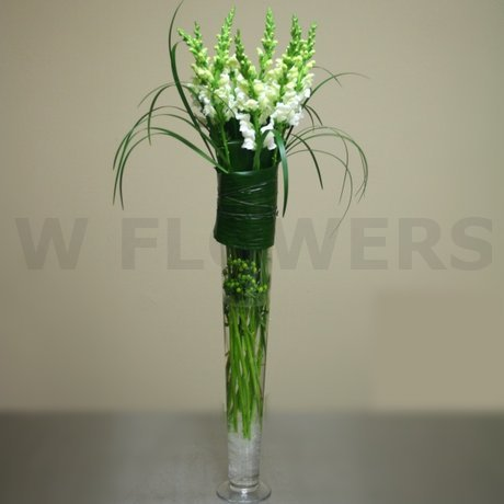 W Flowers product: Tall Vase Centerpiece with Snapdragons