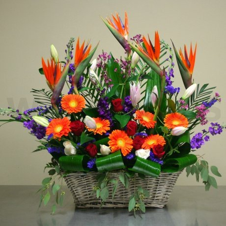 W Flowers product: Tropical Sympathy Arrangement
