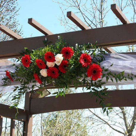 W Flowers product: Wedding Arch With Gerbera and Tulle