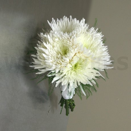 Wedding bouquet white spider mums w flowers ottawa w flowers product wedding bouquet white spider mums mightylinksfo