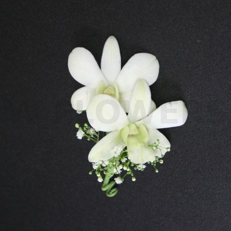 W Flowers product: White Orchid Boutonniere
