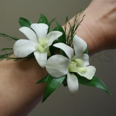 W Flowers product: White orchids wrist corsage