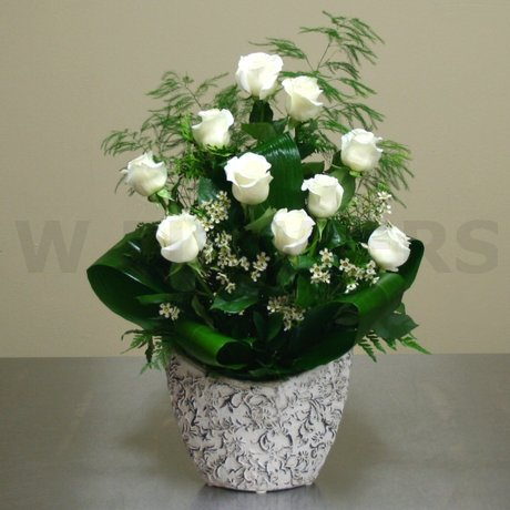W Flowers product: White Roses in a Unique Ceramic Pot