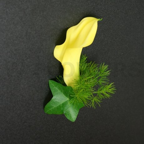 W Flowers product: Yellow Calla Boutonniere